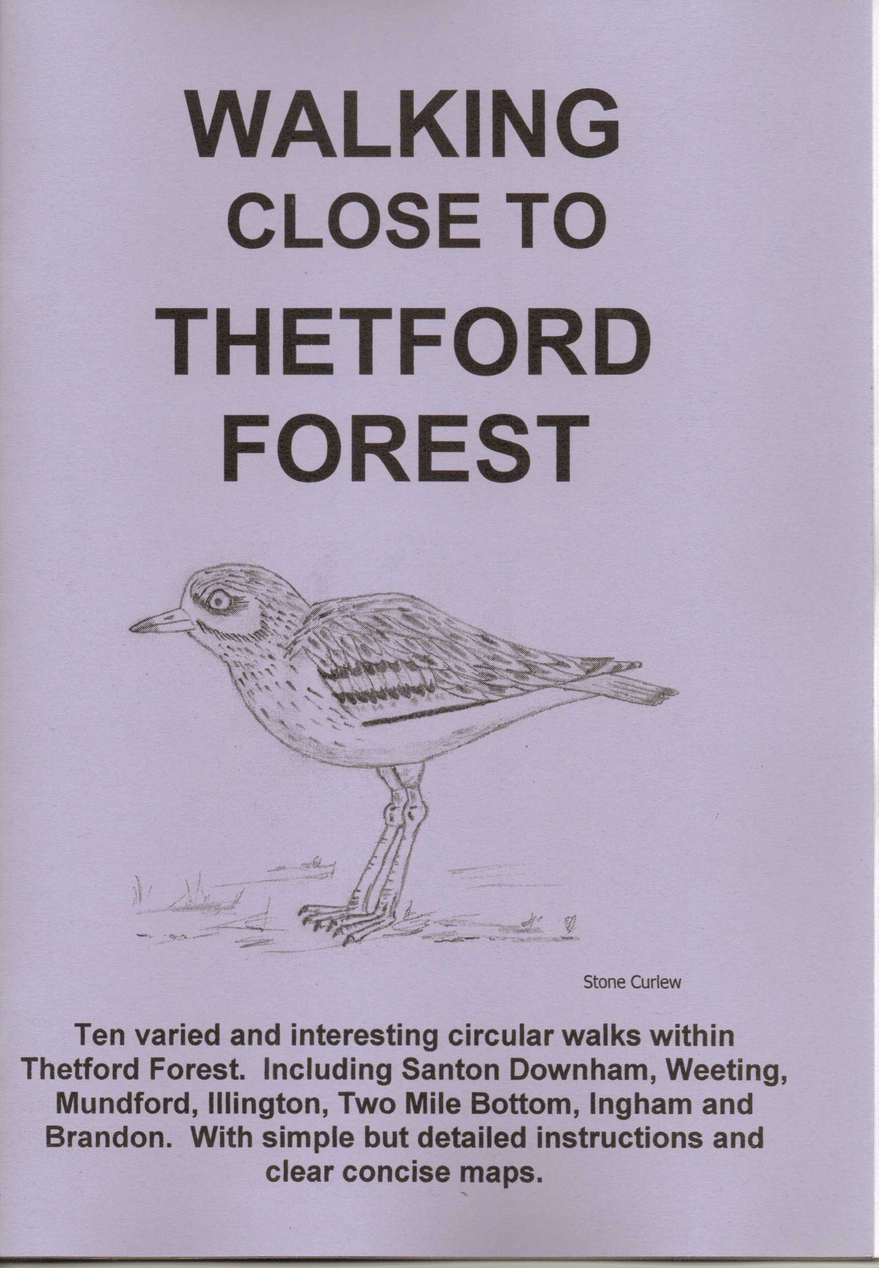 Image for Walking Close to Thetford Forest