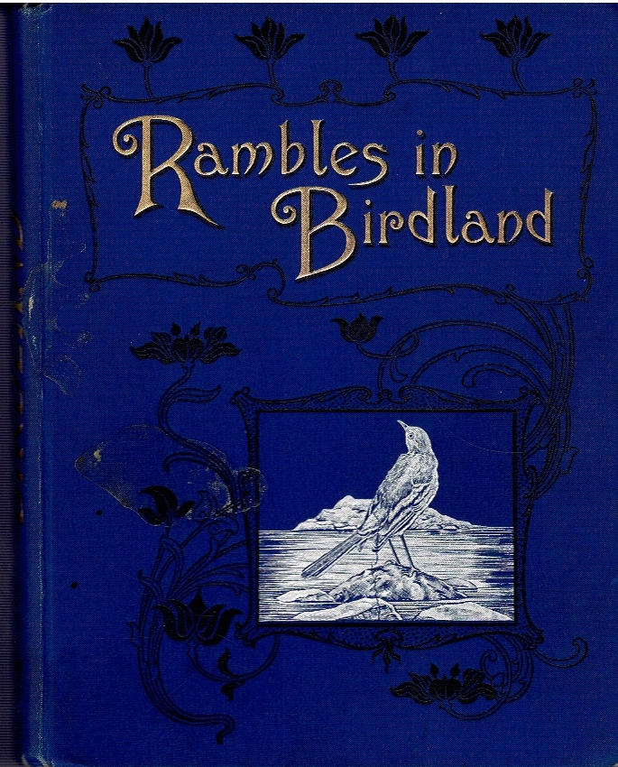 Image for Rambles in Birdland.