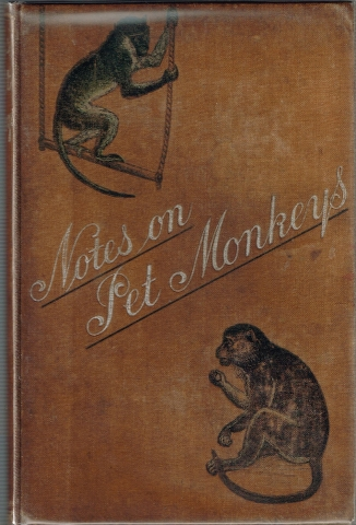 Image for Notes on Pet Monkeys and how to manage them.