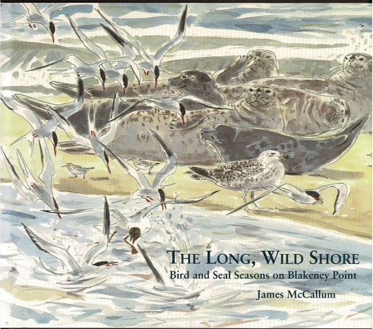 Image for The Long Wild Shore: Bird and Seal Seasons on Blakeney Point